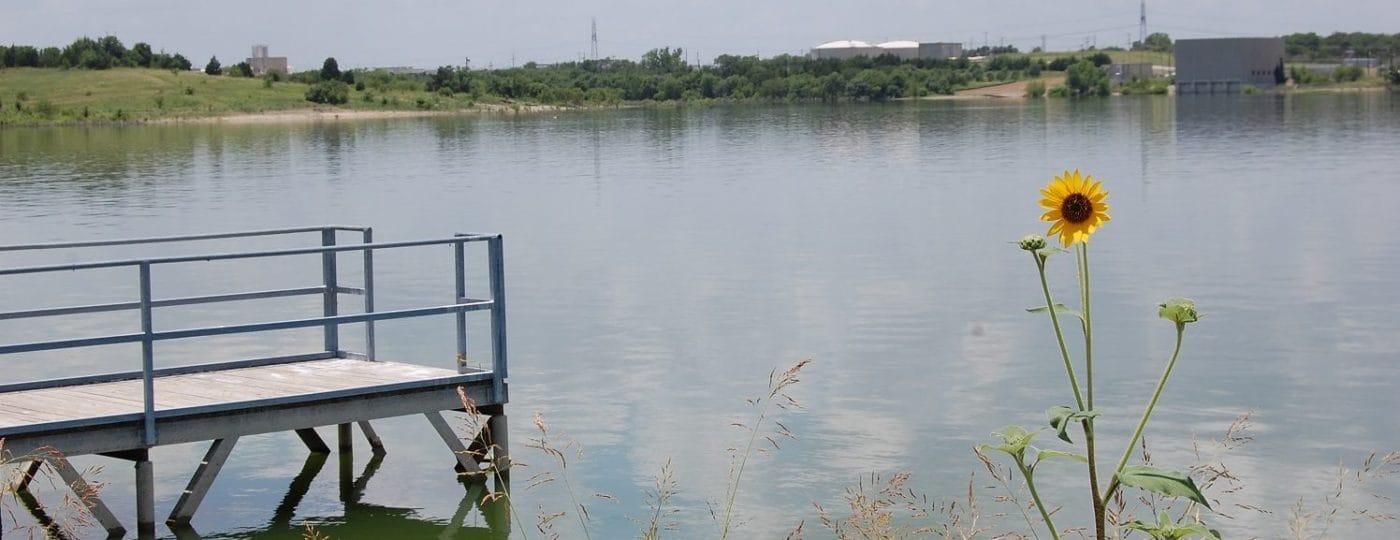 Lavon Lake Sunflower Water Dock