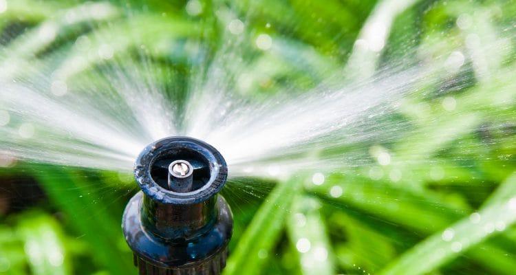 water sprinkler 2049x1465
