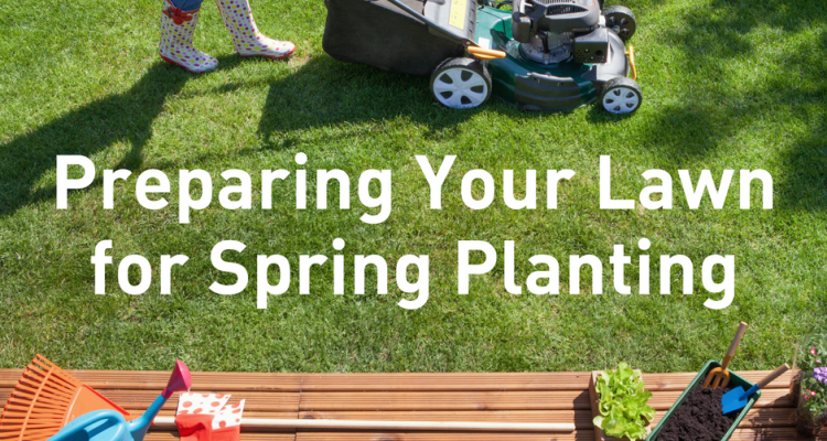 Preparing your lawn for spring planting for Preparing for spring