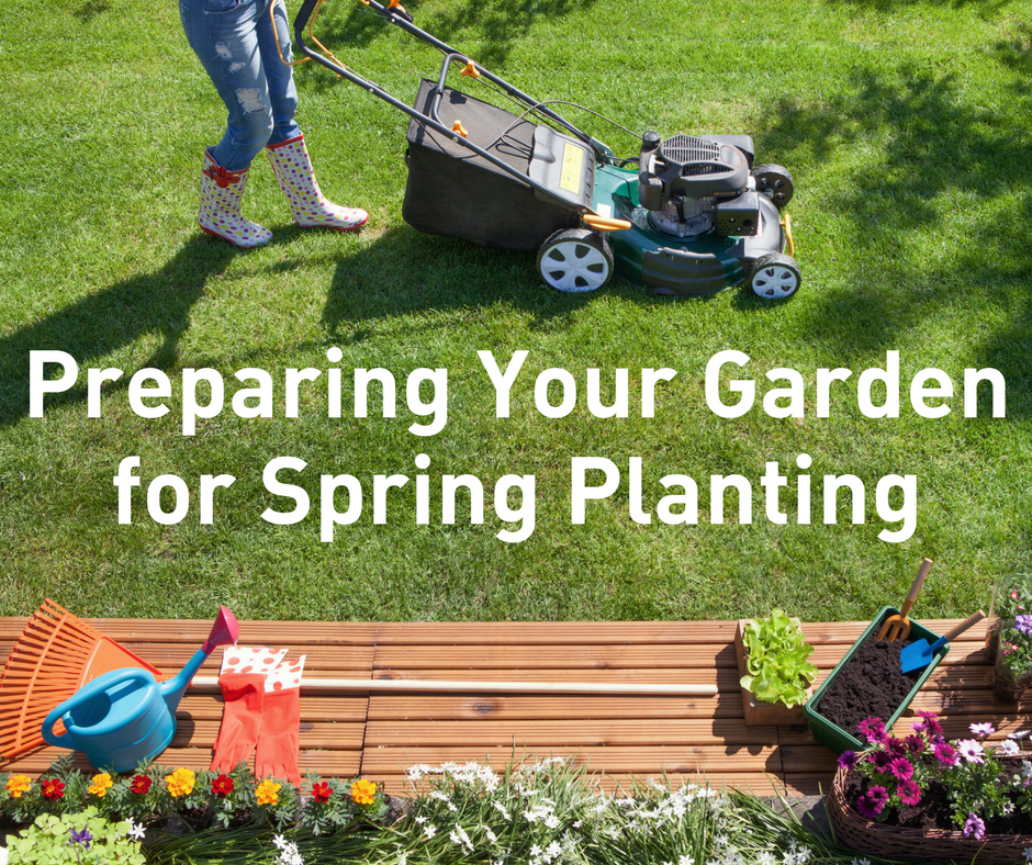 Preparing Your Garden for Spring Planting | NTMWD