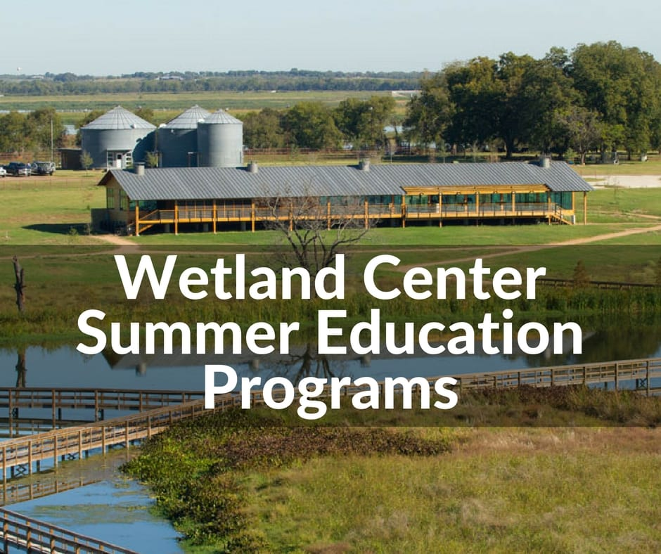 Wetland Center Summer Education Programs