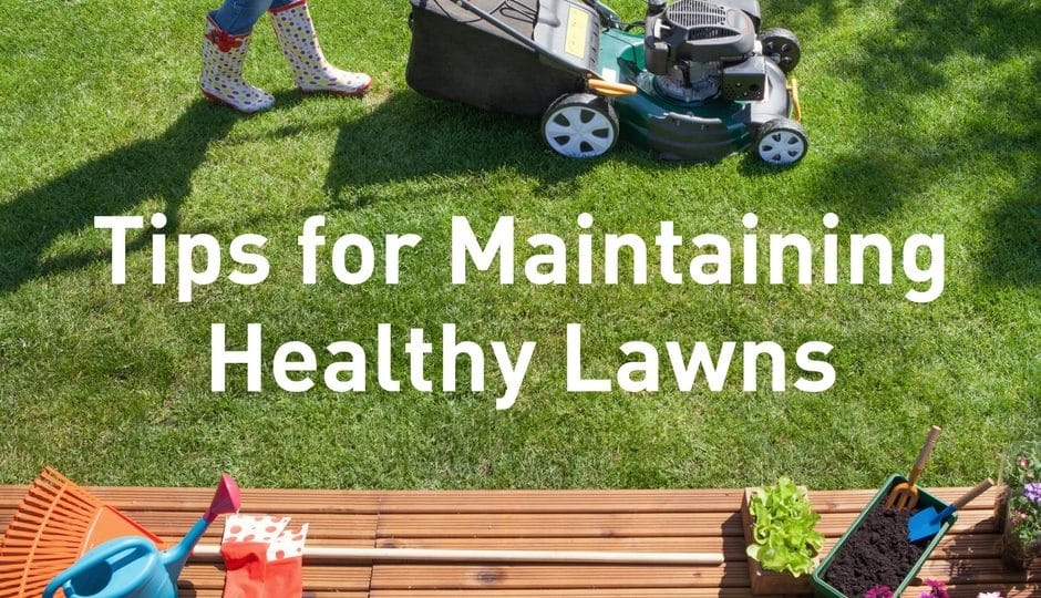 Maintaining Healthy Lawns