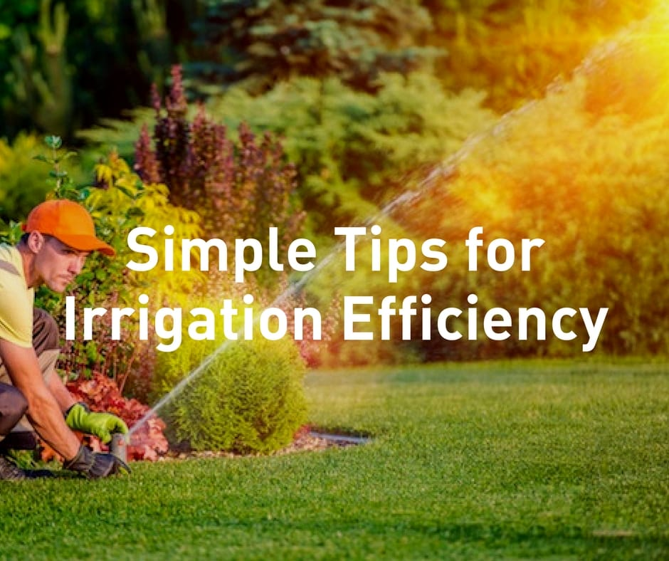 WFAA Green Segment | Simple Tips for Irrigation Efficiency