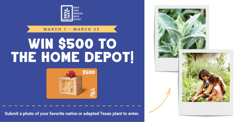 Pledge to Plant Smart Giveaway Contest